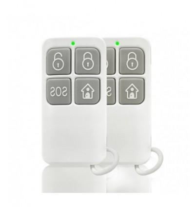Wireless дистанционно управление BL-RC